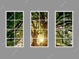 Faux window light 120x240cm 216W LED