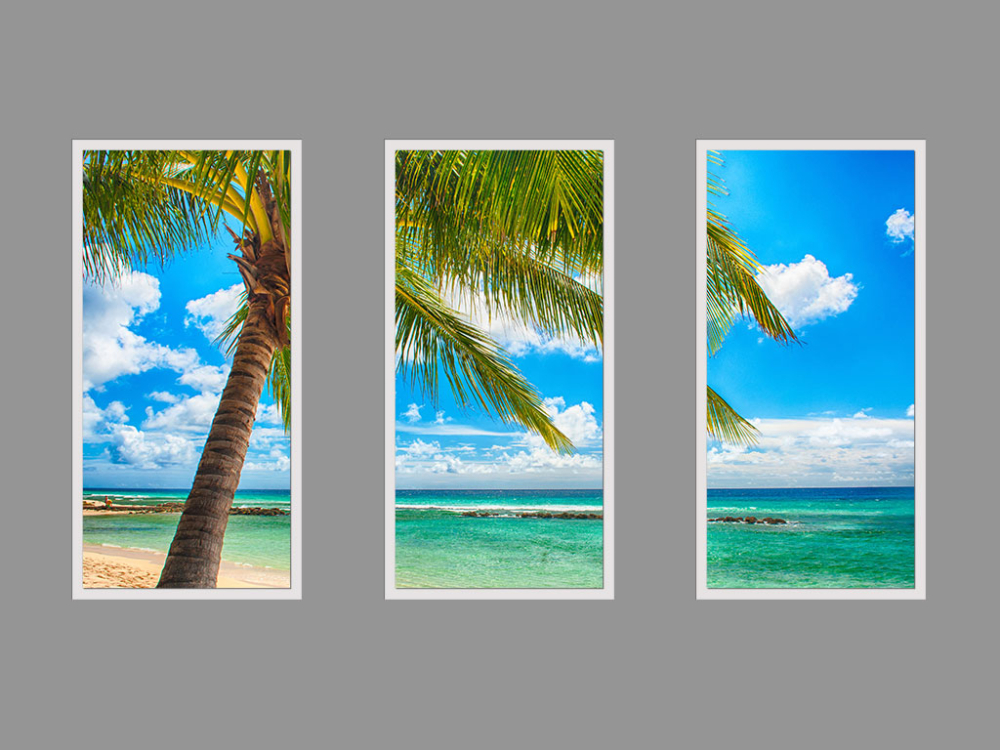Seascapes and tropics