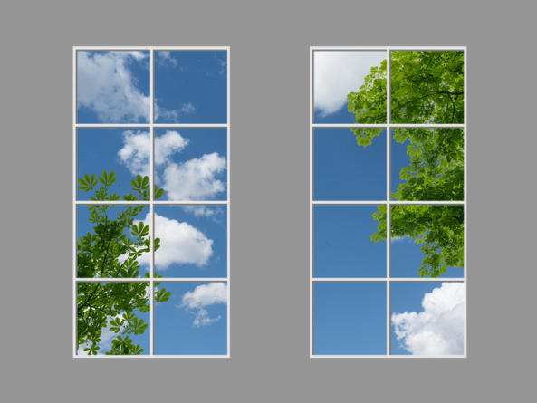 Leafy clouds  GALLERY >