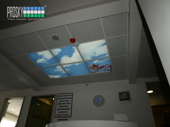 sky ceiling panels