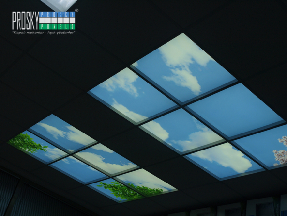 sky ceiling tiles