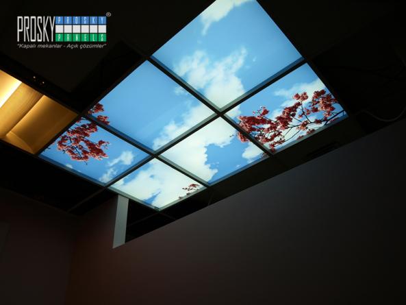 virtual sky ceiling